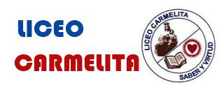 DESEMPEÑOS CARMELITA