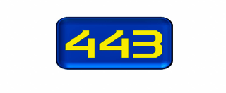 443 Consulting