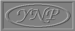 YNP.NET Corp.
